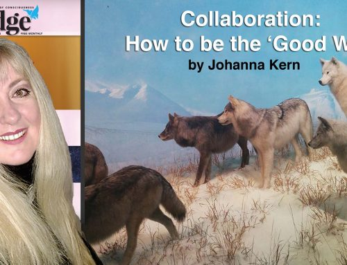 "HOW TO BE THE GOOD 'WOLF' – Johanna Kern's article in ""The Edge"" Magazine"